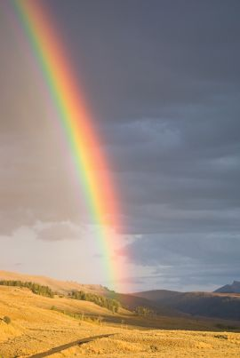 Rainbow in the Backcountry - Yellowstone Hiking Tours and Guided Day Hikes