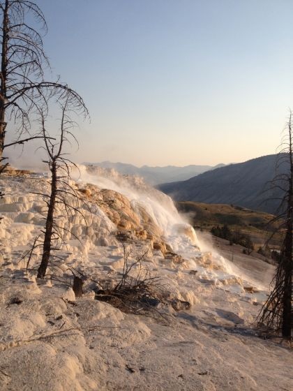 Canary Springs, Mammoth Hot Springs - Yellowstone
