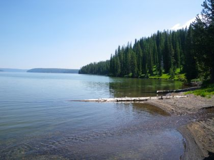 Shores of Shoshone Lake - Yellowstone Guidelines