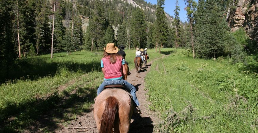 Horseback Riding in the moutains